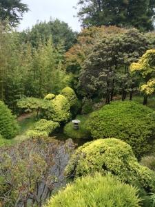 Japanese tea gardens in Golden Gate Park